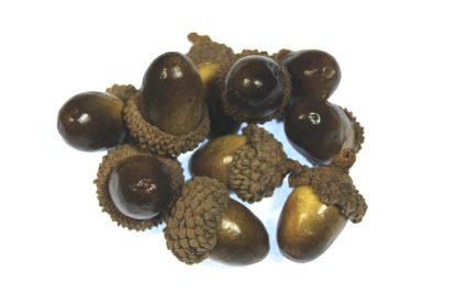 gold and brown artificial acorns celloexpress