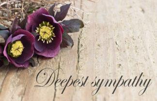 Deepest Sympathy - Purple Flower