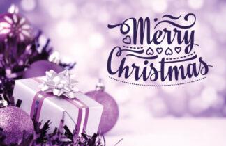 Merry Christmas - Purple Parcel